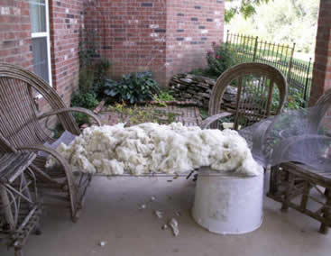 Drying wool